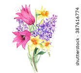Bouquet Of Flowers. Tulip ...