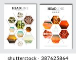 business brochure design... | Shutterstock .eps vector #387625864
