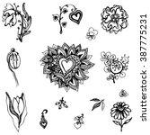 set of vector flowers   Shutterstock .eps vector #387775231