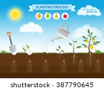 vector infographic concept of... | Shutterstock .eps vector #387790645