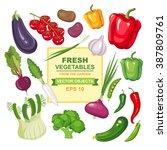 vector illustration set of... | Shutterstock .eps vector #387809761