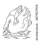 white swan sketch | Shutterstock .eps vector #387907924