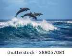 three beautiful dolphins... | Shutterstock . vector #388057081