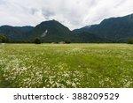 socha valley in the summer   Shutterstock . vector #388209529