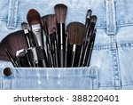 professional tools of make up... | Shutterstock . vector #388220401