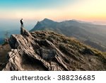 businessman hike on the peak of ... | Shutterstock . vector #388236685