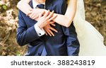wedding  beautiful romantic... | Shutterstock . vector #388243819