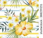 Watercolor Tropical Pattern ...