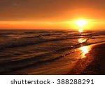 beautiful summer golden sunset... | Shutterstock . vector #388288291