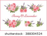 floral  peony lavender... | Shutterstock .eps vector #388304524