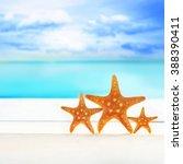 starfish on the summer beach.... | Shutterstock . vector #388390411