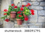 view of hanging baskets... | Shutterstock . vector #388391791