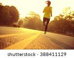 young fitness woman runner... | Shutterstock . vector #388411129