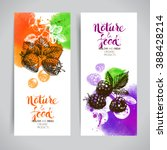 Eco Food Banners Set....