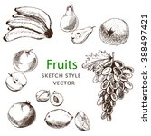 set of isolated sketch fruits.... | Shutterstock .eps vector #388497421