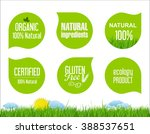 vector labels and emblems of... | Shutterstock .eps vector #388537651