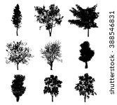 tree silhouette vector | Shutterstock .eps vector #388546831