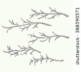 set of hand drawn branch. | Shutterstock .eps vector #388590571