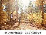 african american family walking ... | Shutterstock . vector #388718995