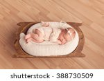 sleeping newborn baby girl | Shutterstock . vector #388730509