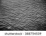 Elephant Skin Texture...