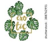 monstera palm leaves on the... | Shutterstock .eps vector #388762951