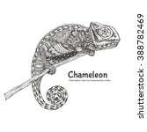 chameleon with doodle pattern.... | Shutterstock .eps vector #388782469