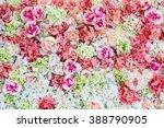 beautiful flowers background... | Shutterstock . vector #388790905