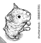 engrave ink draw hamster... | Shutterstock .eps vector #388805581