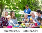 family and friends having a... | Shutterstock . vector #388826584