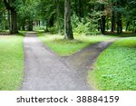A Fork In A Country Forest Road