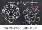 mood and gut bacteria with... | Shutterstock . vector #388851361