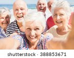 senior friends taking selfie on ... | Shutterstock . vector #388853671