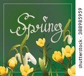 spring lettering postcard or... | Shutterstock .eps vector #388985959