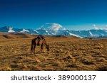 steppe kazakhstan   Shutterstock . vector #389000137