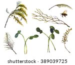 branches  leaves  bee ... | Shutterstock . vector #389039725