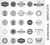 vector logotypes set. retro... | Shutterstock .eps vector #389071375