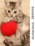 Stock photo the grey kitten plays a red ball 3890998