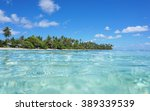 tropical shore with turquoise... | Shutterstock . vector #389339539