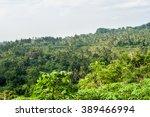 bali rice terraces | Shutterstock . vector #389466994