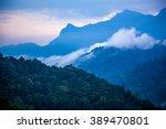 misty tropical rain forest... | Shutterstock . vector #389470801