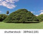 Moanalua Garden In Hawaii