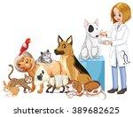 vet and many injured animals... | Shutterstock .eps vector #389682625
