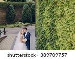 beautiful summer wedding in a... | Shutterstock . vector #389709757