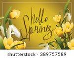 hello spring lettering... | Shutterstock .eps vector #389757589
