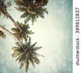 nature tropic background in... | Shutterstock . vector #389812837