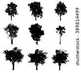 tree silhouette vector | Shutterstock .eps vector #389814499