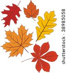 Collection Of Vector Autumn...