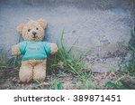 Teddy Bear.lost Teddy Bear