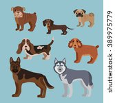 vector illustration of dog... | Shutterstock .eps vector #389975779